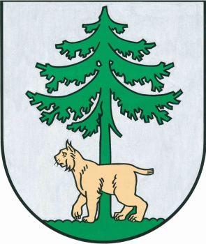 Jēkabpils pilsēta reģistrētas138 NVO