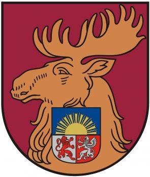 Jelgavas pilsēta reģistrētas 478 NVO
